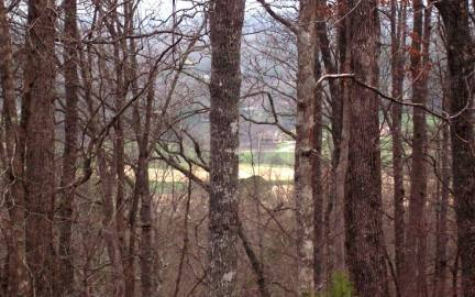 Georgia Mountain land for sale LT 65 TIMBERLINE ACRES, Young Harris, Georgia 30582, ,Vacant lot,For sale,TIMBERLINE ACRES,200912, land for sale Advantage Chatuge Realty