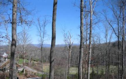Georgia Mountain land for sale 1416 HOLLY COURT, Hiawassee, Georgia 30546, ,Vacant lot,For sale,HOLLY COURT,227250, land for sale Advantage Chatuge Realty