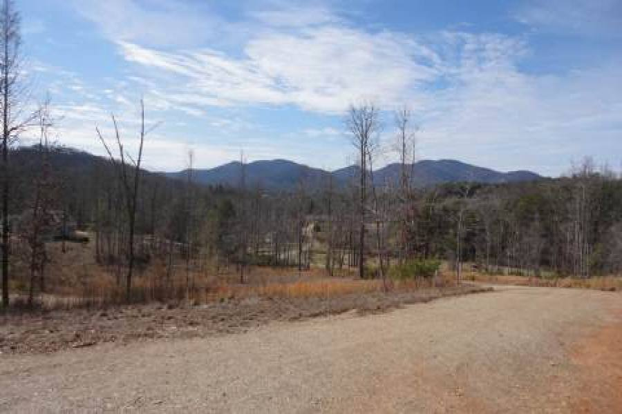 Georgia Mountain land for sale LT 40 ASHELAND COVE, Young Harris, Georgia 30582, ,Vacant lot,For sale,ASHELAND COVE,217348, land for sale Advantage Chatuge Realty