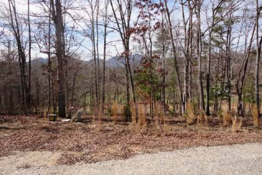 Georgia Mountain land for sale LT 79 ASHELAND COVE, Young Harris, Georgia 30582, ,Vacant lot,For sale,ASHELAND COVE,217373, land for sale Advantage Chatuge Realty