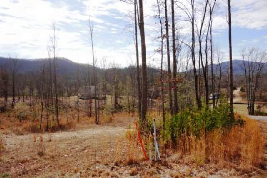 Georgia Mountain land for sale LT 55 ASHELAND COVE, Young Harris, Georgia 30582, ,Vacant lot,For sale,ASHELAND COVE,217357, land for sale Advantage Chatuge Realty