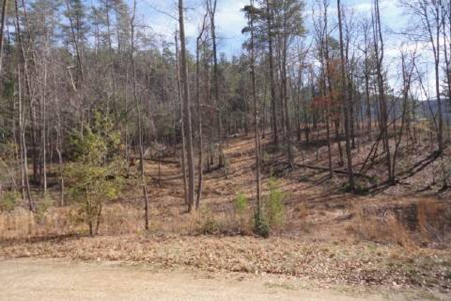 Georgia Mountain land for sale LT 71 ASHELAND COVE, Young Harris, Georgia 30582, ,Vacant lot,For sale,ASHELAND COVE,217365, land for sale Advantage Chatuge Realty