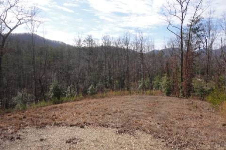Georgia Mountain land for sale LT 75 ASHELAND COVE, Young Harris, Georgia 30582, ,Vacant lot,For sale,ASHELAND COVE,217370, land for sale Advantage Chatuge Realty