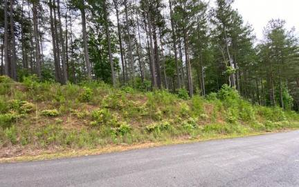 Georgia Mountain land for sale LT236 KATHERINE RD, Blairsville, Georgia 30512, ,Vacant lot,For sale,KATHERINE RD,311238, land for sale Advantage Chatuge Realty